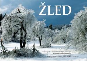 795 1 300x211 - Žled - Kratke zgodbe o izkustvih skozi srhljivo ledeno ujmo in čarobnost žleda v Sloveniji 2014