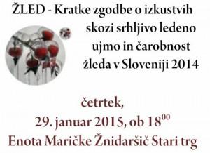 795 2 300x218 - Žled - Kratke zgodbe o izkustvih skozi srhljivo ledeno ujmo in čarobnost žleda v Sloveniji 2014