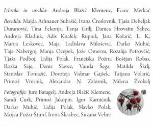 795 5 300x247 - Žled - Kratke zgodbe o izkustvih skozi srhljivo ledeno ujmo in čarobnost žleda v Sloveniji 2014