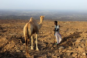 843 1 300x200 - Marjan Olenik: Etiopija - potopisno predavanje
