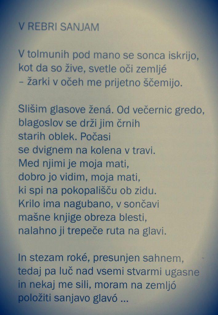 toncka 1 709x1024 - 100-letnica smrti Udovičeve mame Tončke