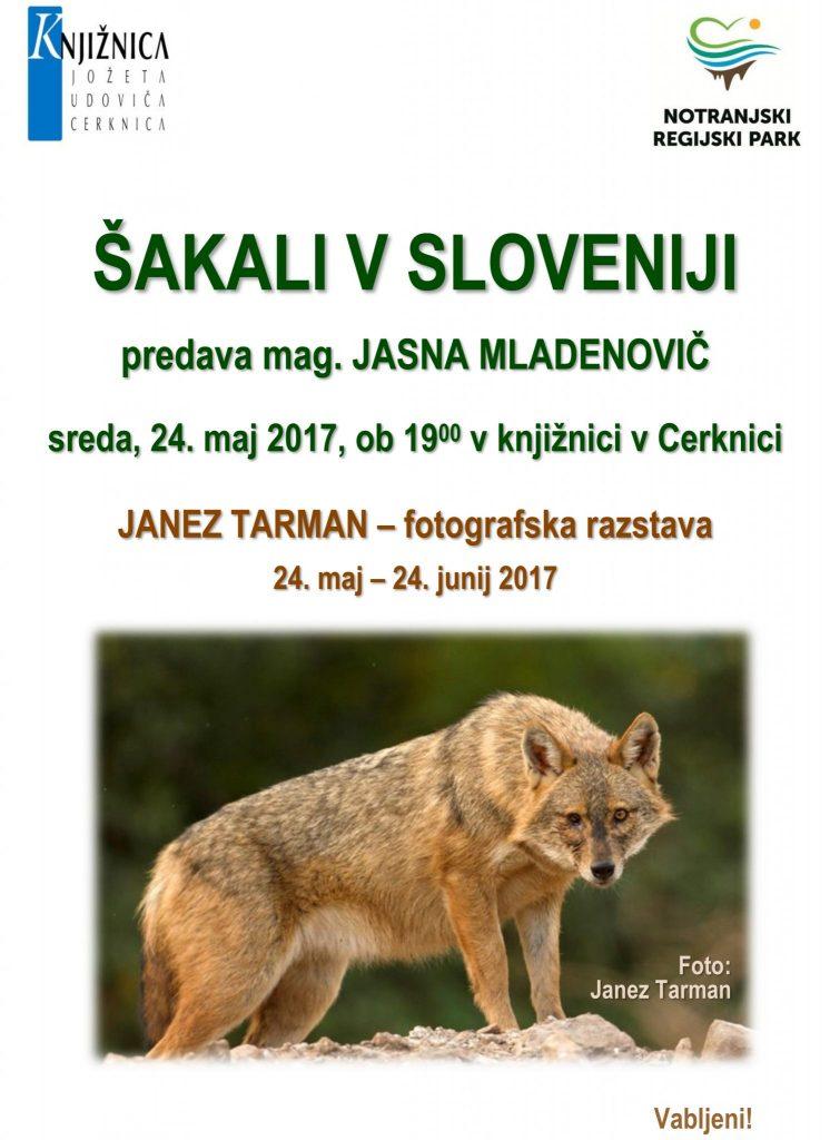 vabilo 746x1024 - Janez Tarman: Šakali v Sloveniji - fotografska razstava