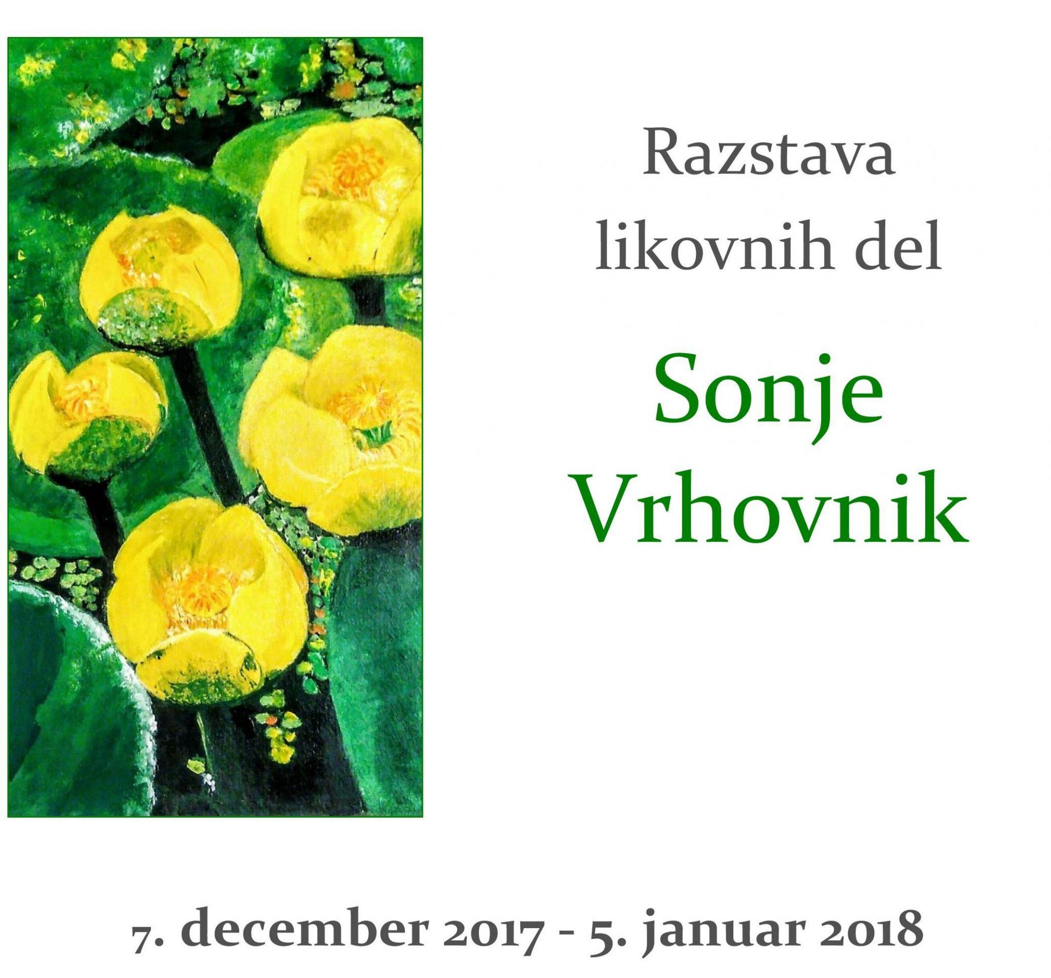 cover 3 - Razstava likovnih del Sonje Vrhovnik