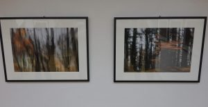 DSC08817 300x155 - Andreja Peklaj: Domovanje skrivnosti - odprtje fotografske razstave
