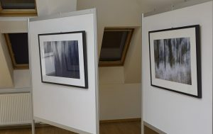 DSC08820 300x189 - Andreja Peklaj: Domovanje skrivnosti - odprtje fotografske razstave