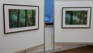 DSC08826 300x173 - Andreja Peklaj: Domovanje skrivnosti - odprtje fotografske razstave