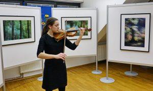 DSC08839 300x179 - Andreja Peklaj: Domovanje skrivnosti - odprtje fotografske razstave