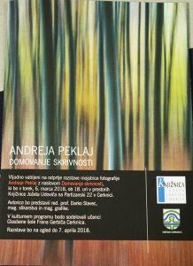 DSC08954 218x300 - Andreja Peklaj: Domovanje skrivnosti - odprtje fotografske razstave