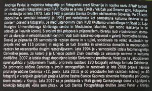 DSC08957 300x180 - Andreja Peklaj: Domovanje skrivnosti - odprtje fotografske razstave