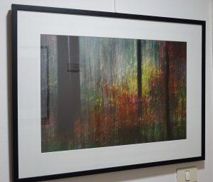 DSC08962 300x256 - Andreja Peklaj: Domovanje skrivnosti - odprtje fotografske razstave