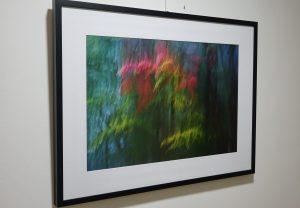 DSC08963 300x208 - Andreja Peklaj: Domovanje skrivnosti - odprtje fotografske razstave