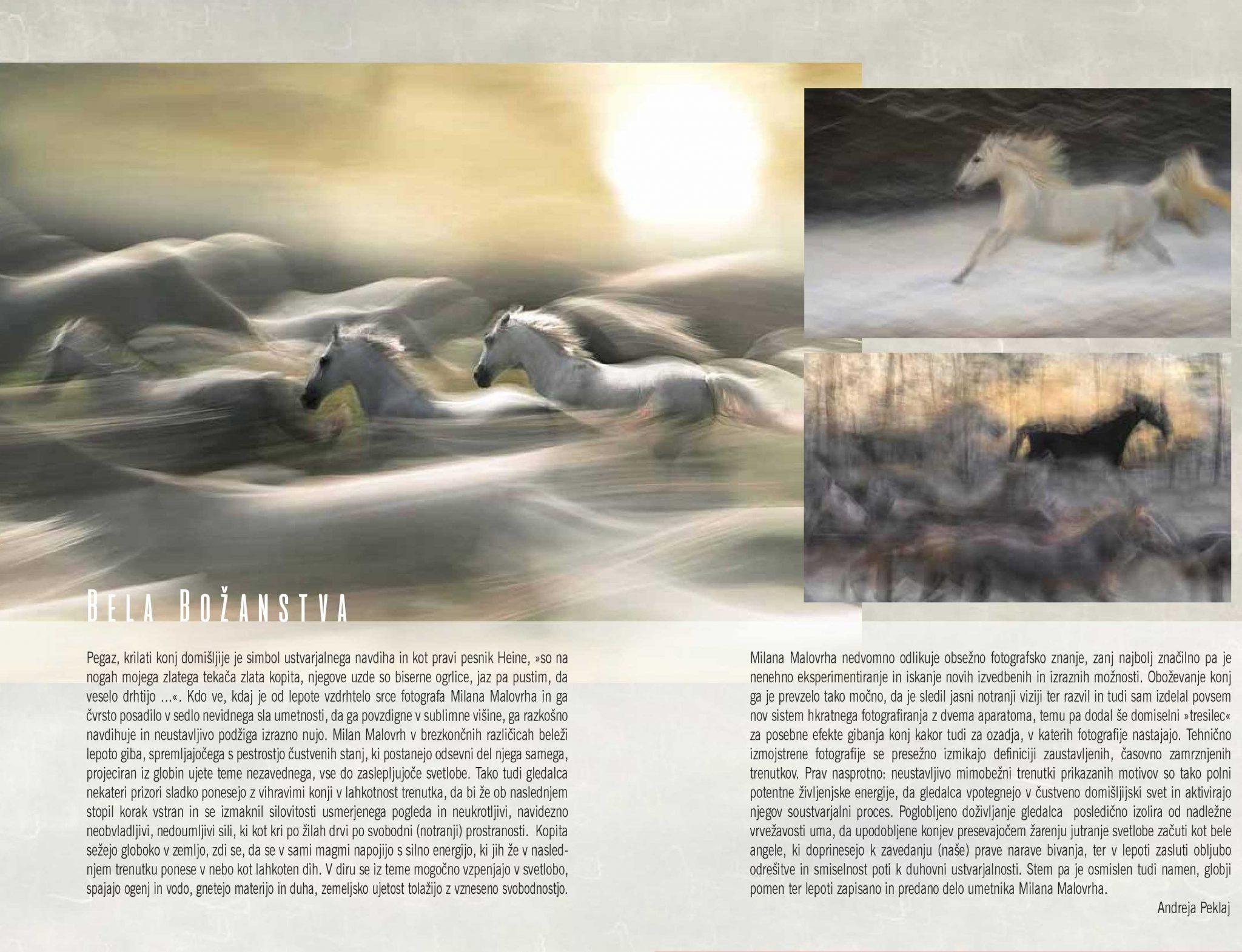 cover2 - Milan Malovrh - Bela božanstva - fotografska razstava