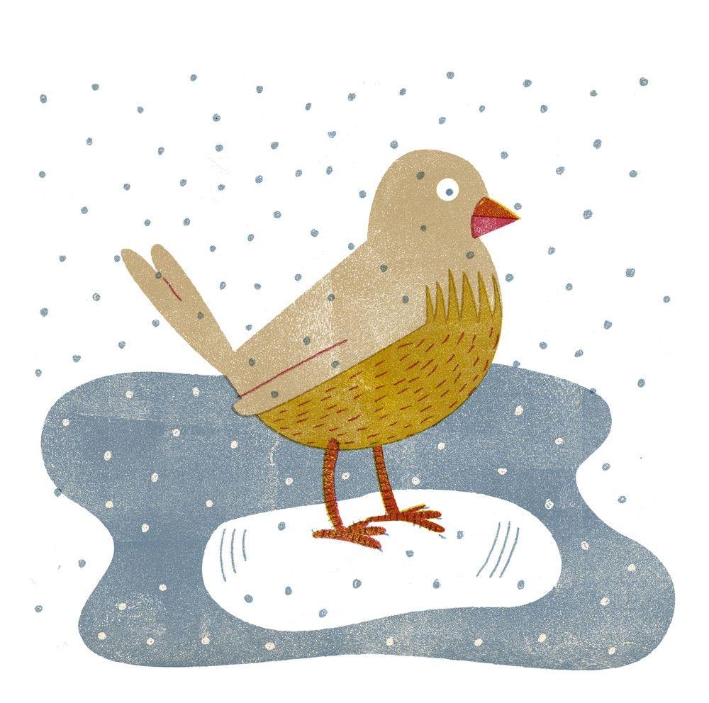 ptička - Dogodki