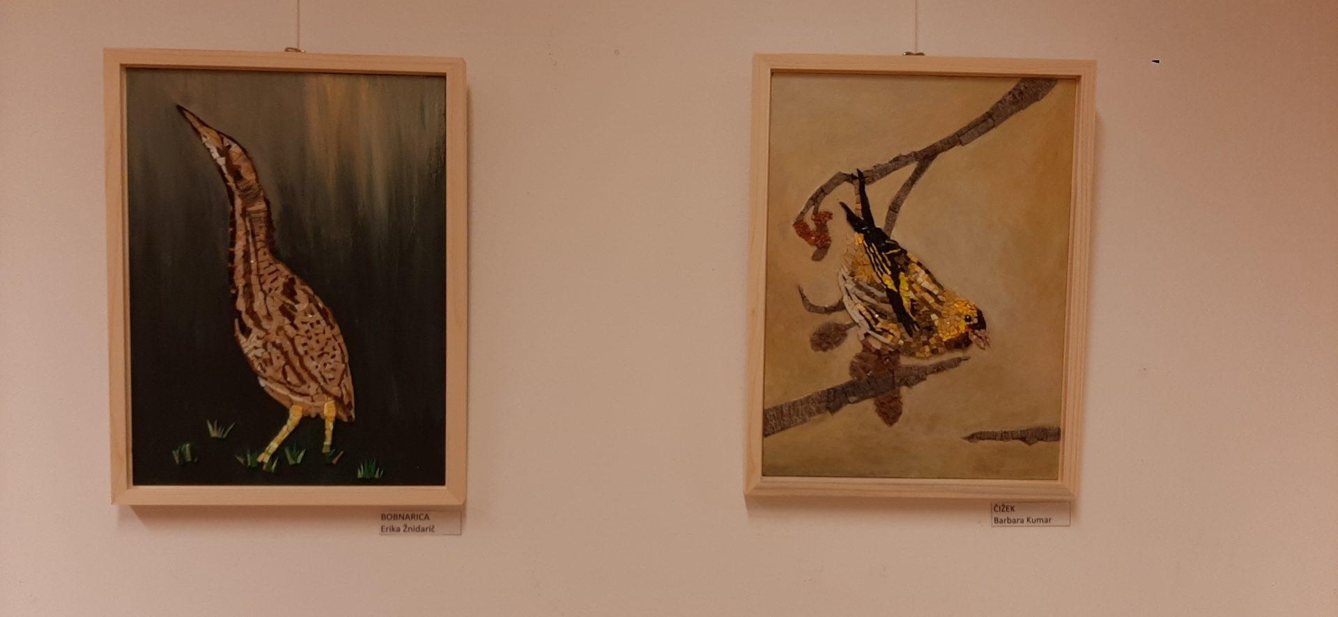 20200918 191454 - Ptice naših krajev – razstava sekcije Mozaik KD Rak Rakek