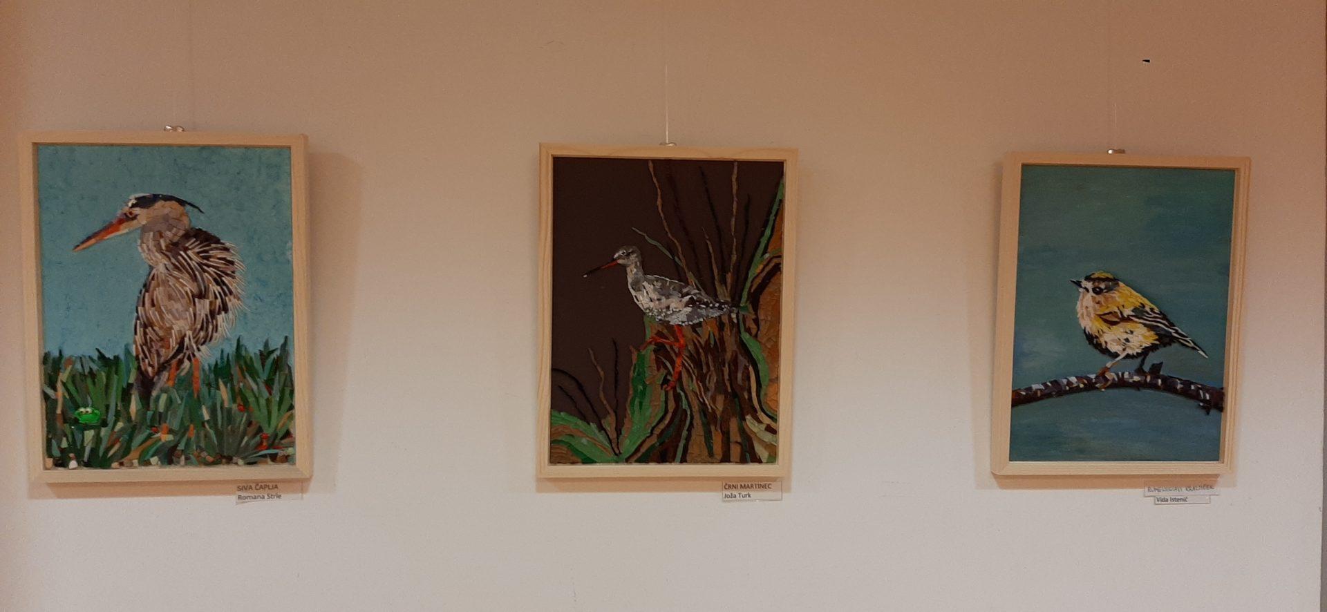20200918 191706 - Ptice naših krajev – razstava sekcije Mozaik KD Rak Rakek