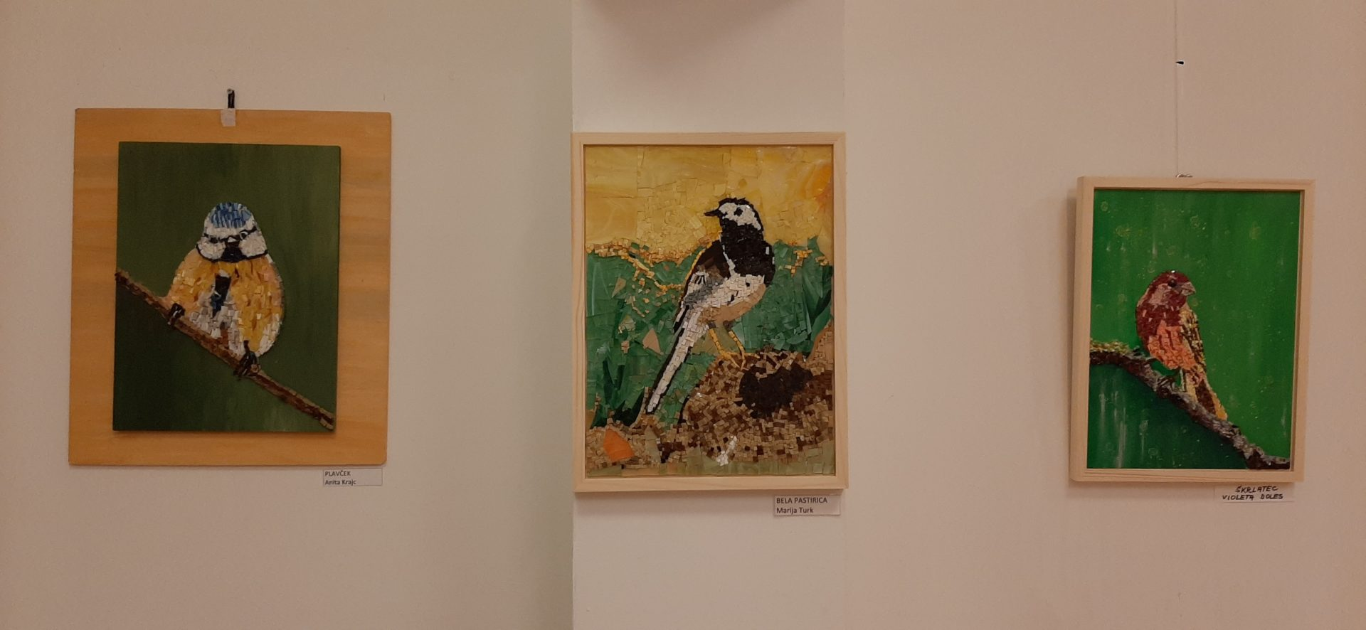 20200918 191855 - Ptice naših krajev – razstava sekcije Mozaik KD Rak Rakek