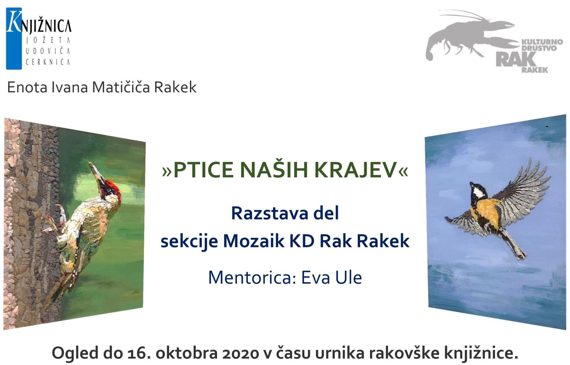 cover2 - Ptice naših krajev – razstava sekcije Mozaik KD Rak Rakek