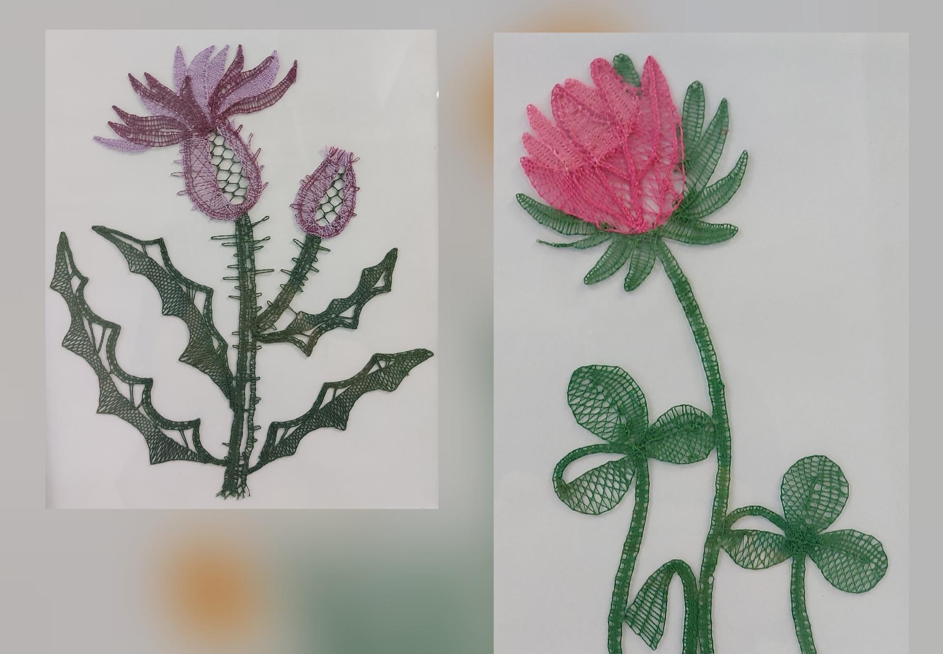 1rozce - Arhiv razstave