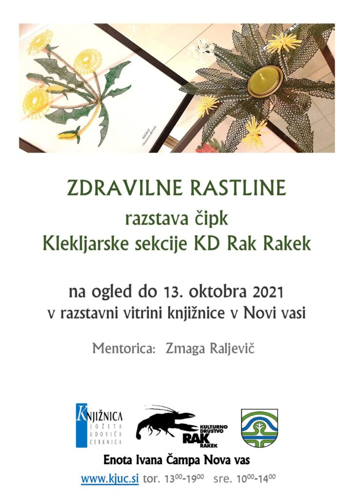 zelisca cipke Nova vas page 001 724x1024 - Zdravilne rastline - razstava čipk Klekljarske sekcije KD Rak Rakek