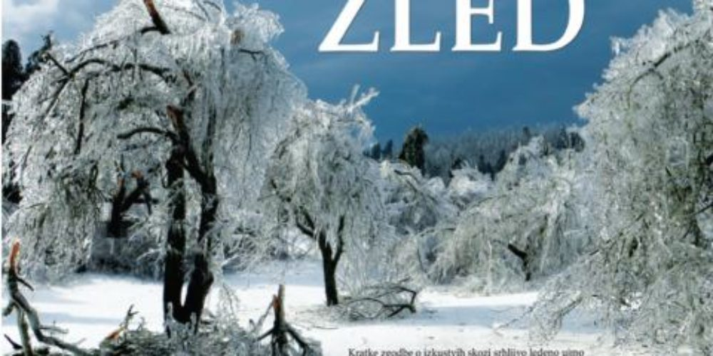 Žled – Kratke zgodbe o izkustvih skozi srhljivo ledeno ujmo in čarobnost žleda v Sloveniji 2014