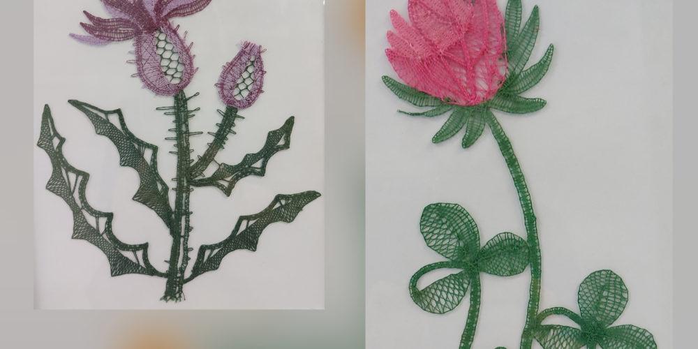 Zdravilne rastline – razstava klekljanih čipk Klekljarske sekcije KD Rak Rakek
